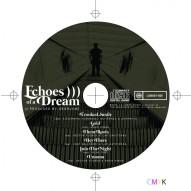 ECHOES DISC ART